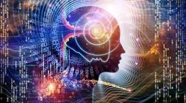 Новый тест покажет вероятность когнитивных нарушений у плода