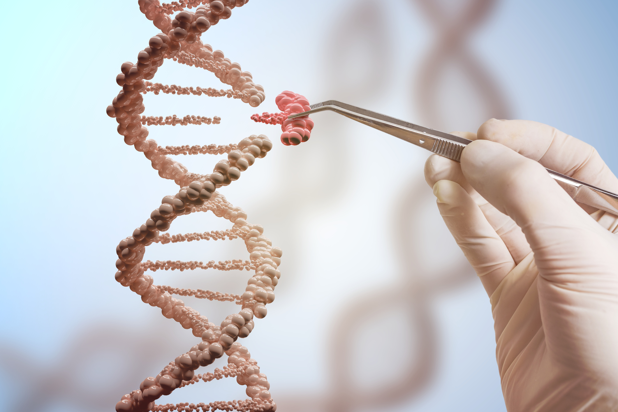 Japan prepares to allow genome editing in human embryos